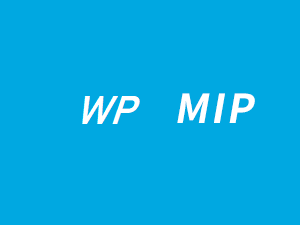 WordpressMIP主题下载,WordPress MIP与百度熊掌号改造接入(V3.4.1)-IT技术网站