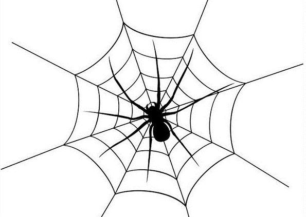 浅谈什么是SEO中的蜘蛛池,及作用弊端