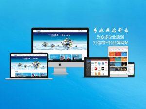 怎样的营销型网站才能满足企业网络营销需求-IT技术网站