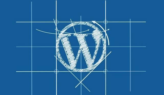 wordpress主题(国内最好的wordpress主题)-IT技术网站