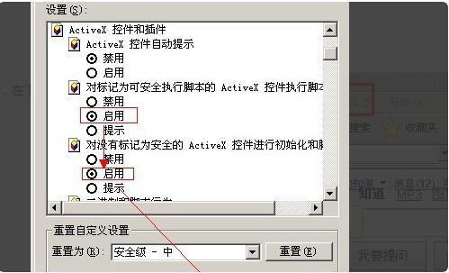 activex控件怎么启用5