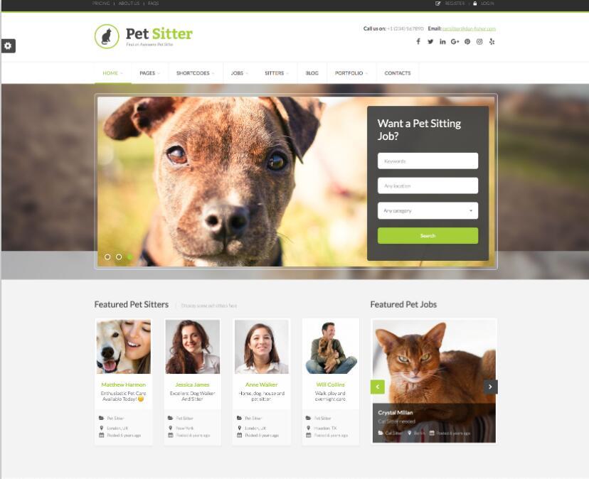 招聘求职主题PetSitter-IT技术网站