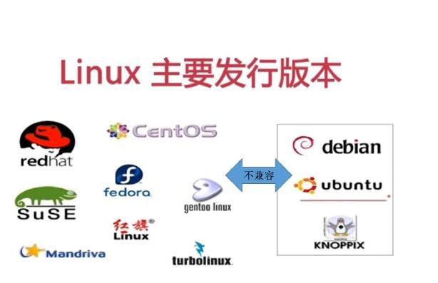 linux 内核(linux最新内核版本是多少)-IT技术网站