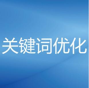 网络营销策划书(范文模板2000字)-IT技术网站