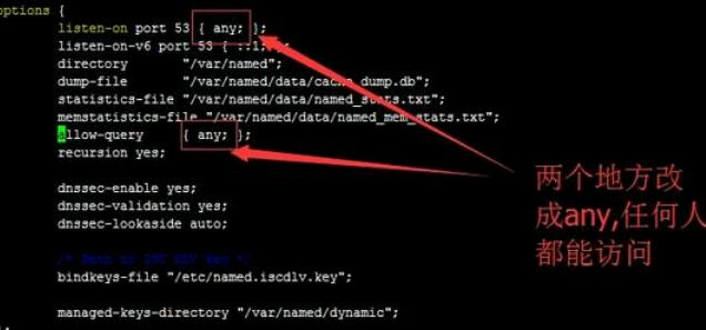 dns解析失败(无法解析dns地址怎么解决)-IT技术网站