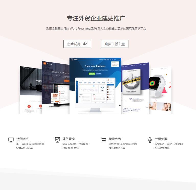 中文汉化版优化版多用途WordPress主题:Divi-IT技术网站