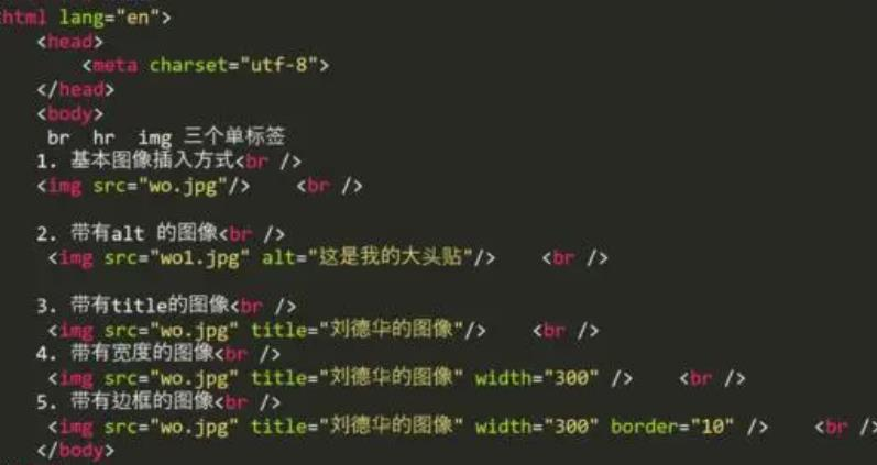 HTML入门(初学者怎样看懂代码)-IT技术网站
